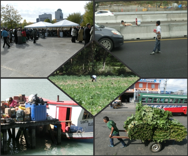 Glimpses Of Local Life